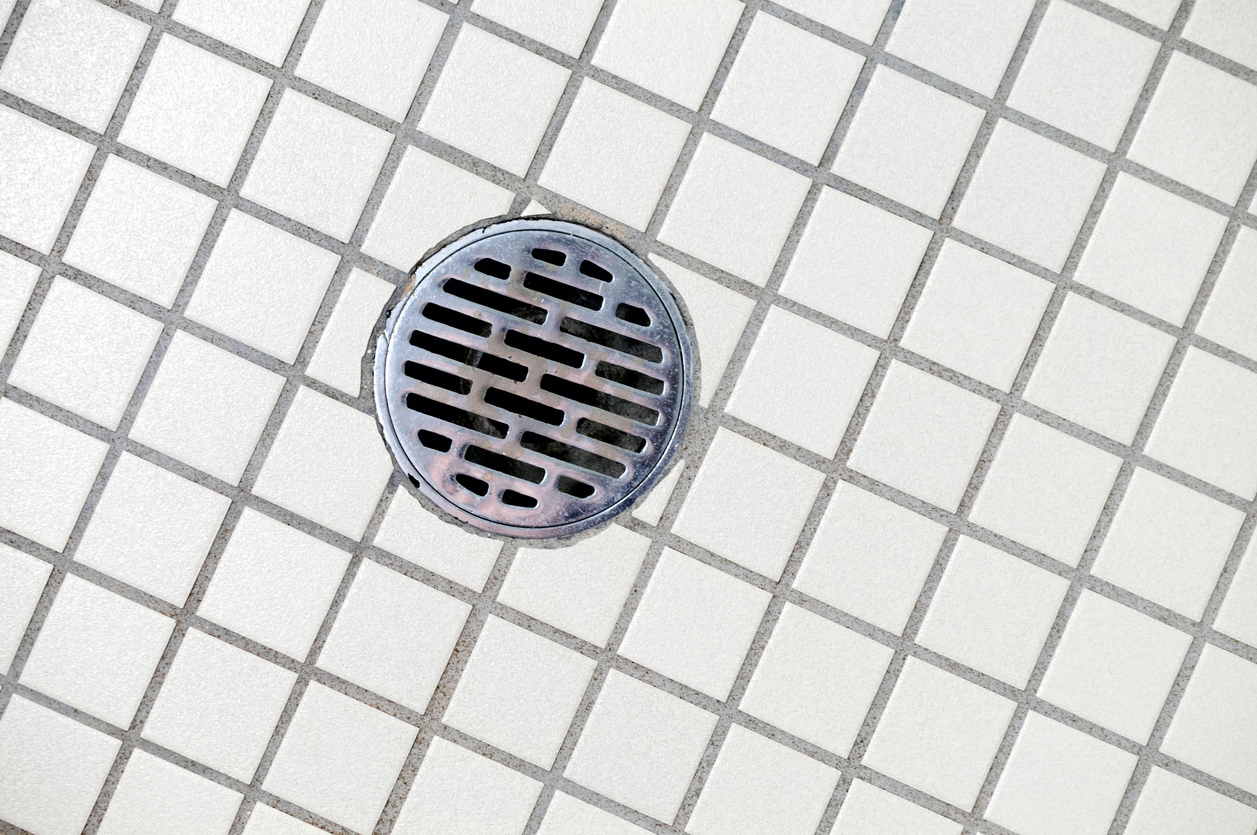Smelly Shower Drain
